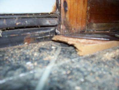 Rotted Laminate Flooring