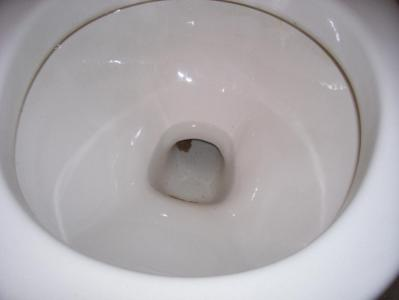 Empty All Water From Bowel Before Pulling Toilet