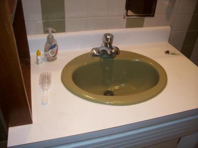 New Faucet Installed-Green Sink